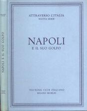 Napoli e il suo golfo