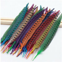 Wholesale 10-100 PCS 30-35cm/12-14inches Natural Pheasant Tail Feathers diy