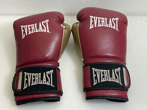 Everlast Pro Style Training Gloves Red Gold 16 oz. Boxing Gloves