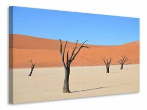 Leinwandbild Sossusvlei Namibia