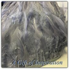 Grey Rooster Feather Fringe Ribbon Trim ( for 30cm) DIY Craft Clothing