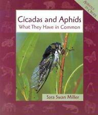 Cicadas & Aphids (Animals in Order)-ExLibrary