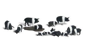 Woodland Scenics A1864 Hampshire Schweine, Figuren Miniaturwelten H0 (1:87)