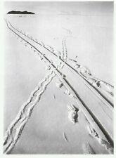 "*Postcard-""Penguin & Sledge Track"" S Pole"" *Scott's Antarctic Expedition"" (Q1"