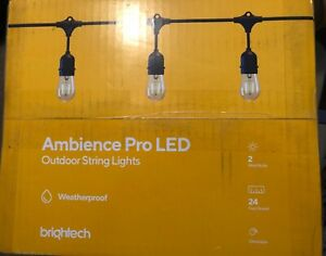 Brightech Ambience Pro LED Outdoor String Lights 24 ft white 2W Weatherproof