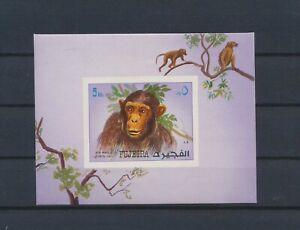 LO41654 Fujeira monkey animals wildlife imperf sheet MNH