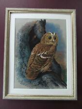 """BASIL EDE  TAWNY OWL VINTAGE 1970's PRINT   IN NEW FRAME 13.5""""x10.5"""""""