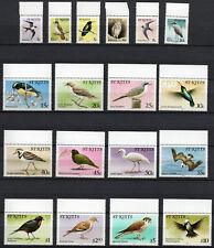 Birds on Stamps - St. Kitts 1981 Birds