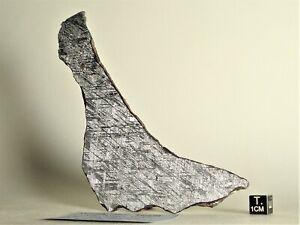 Meteorite iron, finest octahedrite TURGUT Turkey, etched COMPLETE slice 113,1 g