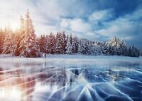 Awesome Frozen Forest Lake Poster Print Size A4 / A3 Nature Poster Gift #8122