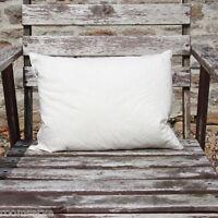 Duck Feather Cushion Pad - Various Rectangular Sizes