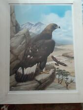 """Roger Tory Peterson """"GOLDEN EAGLE"""" Matted/Rag Board S/N LE 423/950 27"""" X 20"""""""