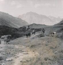 BOURG ST MAURICE c. 1949 - Troupeaux Éleveuse Enfant Alpage Savoie - NV 484