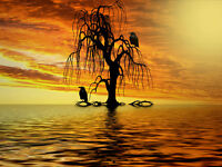 """perfect  36x24 oil painting handpainted on canvas """"Sunrise And Raven"""" NO4276"""
