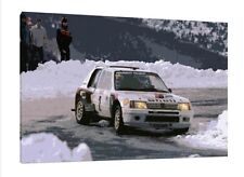 Peugeot 205 T16 - 30x20 Inch Canvas - Framed Picture Painting Group B Rally