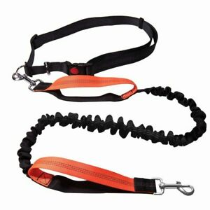 Dogs Pet Harness Collar Jogging Lead and Adjustable Elasticity Hand Freely Pet P
