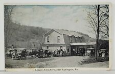 Covington Pa Locust Auto Park Tioga County Postcard N6