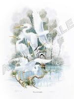 Herons of the Everglades 20x26 L/E S/N LITHOGRAPH signed by Artist Bob Jenny