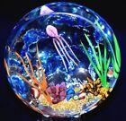 Fascinating WILLIAM MANSON Drifting JELLY FISH AQUARIUM Art Glass PAPERWEIGHT
