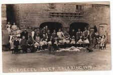 More details for trecefel sheep shearing 1910