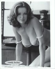 Candy Loving Playboy Model 1979  Poster b 13x19 inches