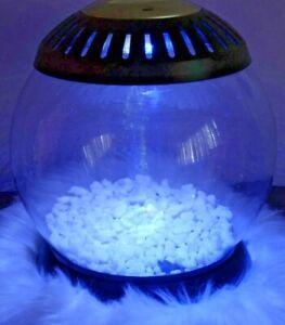 Fish Bowl w/ Blue/Clear Lighting, USB/Battery Powered, 1 Gallon