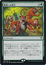 ***4x JAPANESE Beastmaster Ascension*** Commander 2016 Mint MTG Magic Cards