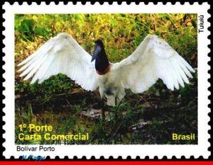 3140G BRAZIL 2010 PANTANAL, BIRDS TUIUIU,  JABIRU, MNH