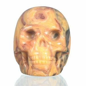 """1.93""""Natural Crazy Lace Agate  Carved Skull Metaphysic Healing Power #33L39"""