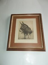 DONKEY ETCHING SIGNED BY D. GUARDINO 82