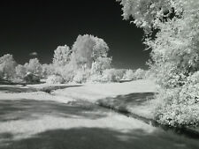 Canon G7 X Mark II Mk2 Mk II 830nm Black and White Infrared IR converted camera
