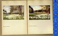 ENGLAND: Sandringham, Park & St Mary Magdalene Church-- Vintage 1916 Lithographs