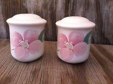 Pfaltzgraff Dishes Peach Floral Salt & Pepper Shaker Set