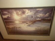 """Clyde Butcher Sigd #105 Ltd Ed Dunes Color Photo Framd/Matted 13 1/4""""x19 1/4"""" NF"""