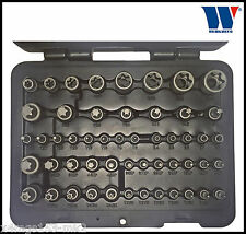 Werkzeug - Master Impact - T-Star Torx, E, Plus & Tamperpr Set 52 Pcs Pro - 1165
