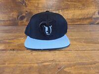 Memphis Grizzlies flat bill cap - Mitchell & Ness Nostalgia Co snapback hat