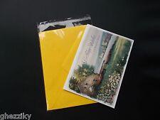 100 A7+ 5.4 x 7.25 Clear Resealable Cello Bag Plastic Envelopes Cellophane Bags