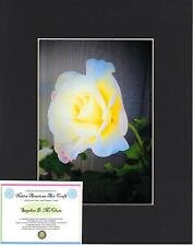 """WHITE, YELLOW and PINK ROSE ~Fine Art~ Photograph 5""""X7"""" matted 8""""X10"""" w/COA IACB"""