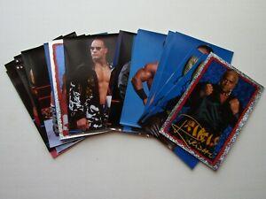 Merlin 2001 WWE Mega Photo Stickers  Wrestling Sticker Variants (e8)