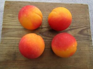 Vintage Italian Alabaster Stone Fruit Peach Lot 4 Ex Hand Carved Painted Italy N