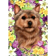 Easter House Flag - Norwich Terrier 33152