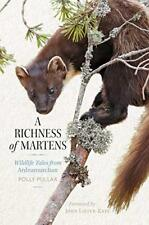 A Richness of Martens: Wildlife Tales from Ardnamurchan-Polly Pullar