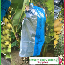 Banana Bunch Protection Cover - Qty 5 X Blue/Silver Fruit Bag