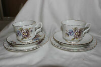 2 Trios Salisbury Side Plate Saucer Tea Cup Blue Rose