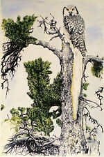 Art Picture Greeting Card Painting Watercolor Bird Owl Tree Wildlife Nature