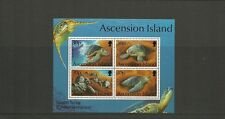 ASCENSION ISLAND-SGMS628-GREEN TURTLES-MNH