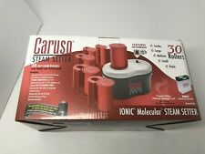 Caruso Professional 30-Piece Multiple Size Steam Hair Setter