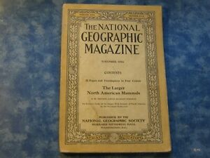 ANTIQUE NATIONAL GEOGRAPHIC November 1916 LARGER NORTH AMERICAN MAMMALS +POSTER