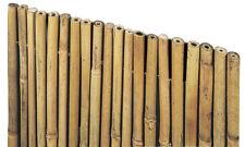 VERDELOOK Arella River in cannette di bamboo pieno 1.5x3 m coperture recinzioni