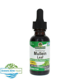 Mullein Leaf | Nature's Answer | 30ml
